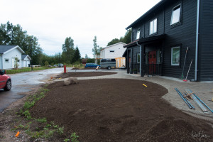 Plant soil being prepared for the lawn